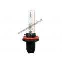 Xenon lemputė H11