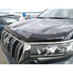 Toyota Land Cruiser 150 2018 → kapoto deflektorius EGR